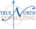 True North Consulting logo